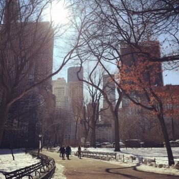 vue depuis Central Park enneigé