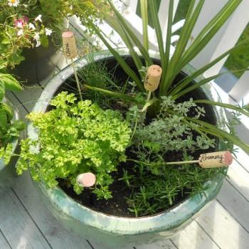 porte-nom pour plantes en bouchons