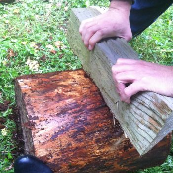 DIY table en tronc d'arbre bûche