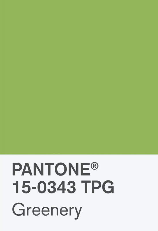 Couleur pantone 2017 5 astuces pour int grer greenery dans sa d co pierre - Pantone couleur de l annee ...