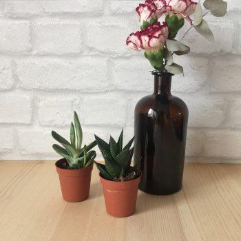 déco avec bouteilles en verre brun apothicaire vase