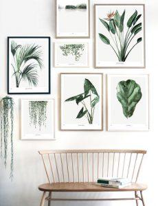 Conseils astuces verdure déco main verte