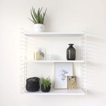 Plantes d'intérieur : mon expérience, conseils pour avoir la main verte
